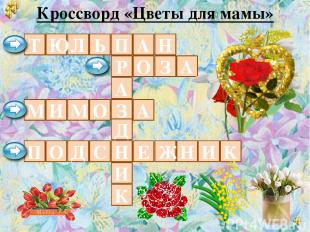 Кроссворд «Цветы для мамы» П Р А З Д Н И К О Л Т А Н Ь Ю З А М И М О А П О Д С Е