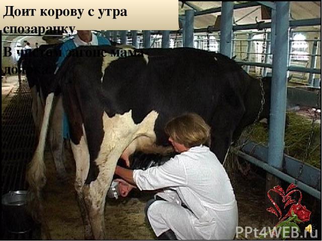 Доит корову с утра спозаранку В чистом загоне мама-доярка.