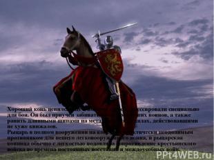 Хороший конь ценился еще и потому, что его дрессировали специально для боя. Он б