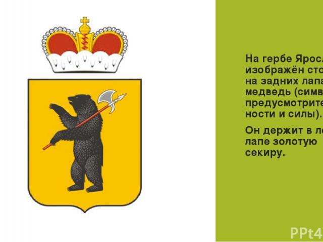 ГЕРБ На гербе Ярославля изображён стоящий на задних лапах медведь (символ предусмотритель-ности и силы). Он держит в левой лапе золотую секиру.