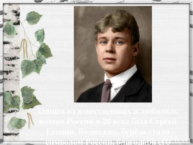 Одним из известнейших и любимых поэтов России в 20 веке был Сергей Есенин. Возможно, берёза стала символом России, благодаря его произведениям.
