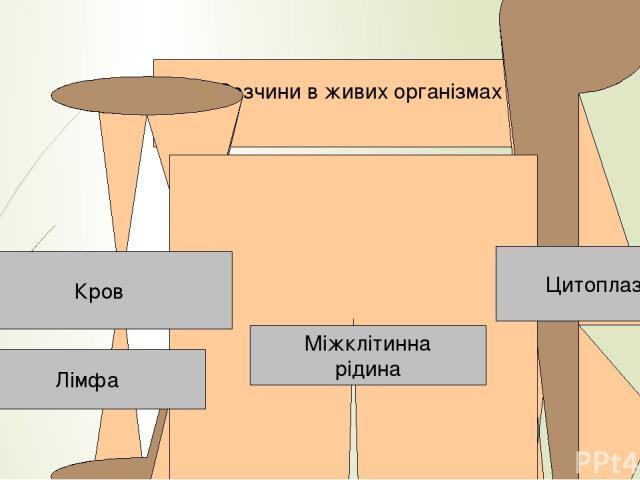 йонний Розчини в живих організмах Кров Міжклітинна рідина Цитоплазма Лімфа