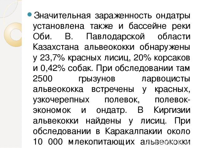 Значительная зараженность ондатры установлена также и бассейне реки Оби. В. Павлодарской области Казахстана альвеококки обнаружены у 23,7% красных лисиц, 20% корсаков и 0,42% собак. При обследовании там 2500 грызунов ларвоцисты альвеококка встречены…