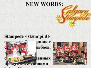 Stampede -[stæm'pi:d]- ежегодный праздник с состязаниями ковбоев, выставкой сель