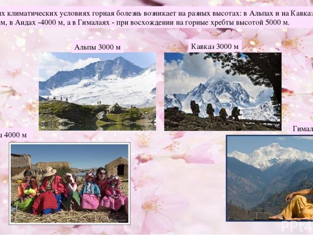 В различных климатических условиях горная болезнь возникает на разных высотах: в Альпах и на Кавказе - на высоте 3000 м, в Андах -4000 м, а в Гималаях - при восхождении на горные хребты высотой 5000 м. Альпы 3000 м Кавказ 3000 м Анды 4000 м Гималаи 5000 м