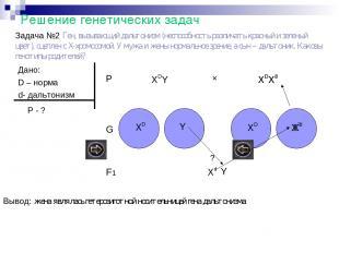 Решение генетических задач Задача №2 Ген, вызывающий дальтонизм (неспособность р