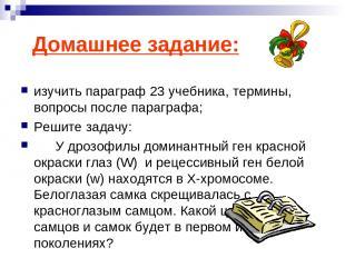 Домашнее задание: изучить параграф 23 учебника, термины, вопросы после параграфа