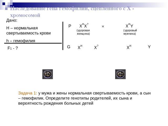 Наследование гена гемофилии, сцепленного с Х - хромосомой Дано: H – нормальная свертываемость крови h – гемофилия F1 - ? P XHX? × XHY (здоровая (здоровый женщина) мужчина) XH XH X? Y G Задача 1: у мужа и жены нормальная свертываемость крови, а сын –…