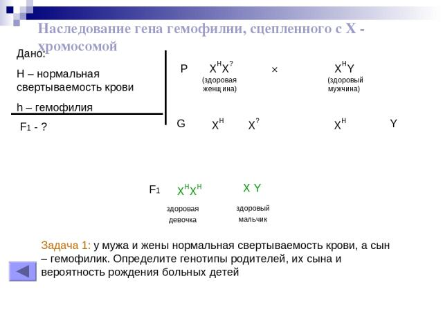 Наследование гена гемофилии, сцепленного с Х - хромосомой Дано: H – нормальная свертываемость крови h – гемофилия F1 - ? P XHX? × XHY (здоровая (здоровый женщина) мужчина) XH XH X? Y G здоровая девочка XHXH здоровый мальчик X Y F1 Задача 1: у мужа и…