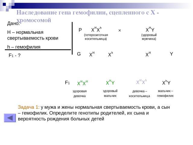 Наследование гена гемофилии, сцепленного с Х - хромосомой Дано: H – нормальная свертываемость крови h – гемофилия F1 - ? P XHXh × XHY (гетерозиготная (здоровый носительница) мужчина) XH XH Xh Y G здоровая девочка XHXH здоровый мальчик XHY девочка – …