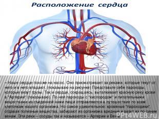 – Наше сердце похоже на насос. Оно присматривает за реками, которые текут от нег