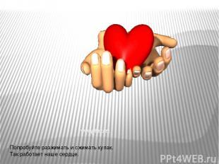 Попробуйте разжимать и сжимать кулак. Так работает наше сердце.