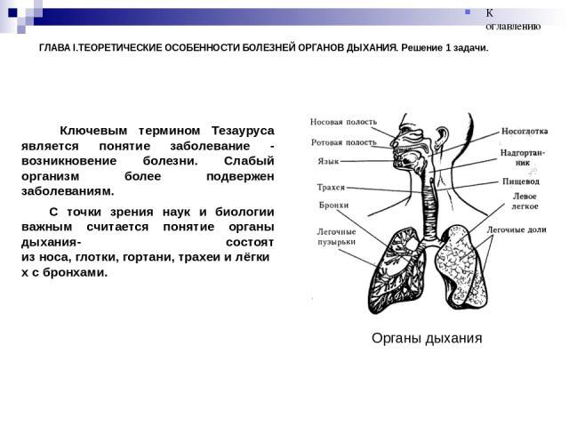 ГЛАВА I.ТЕОРЕТИЧЕСКИЕ ОСОБЕННОСТИ БОЛЕЗНЕЙ ОРГАНОВ ДЫХАНИЯ. Решение 1 задачи. Ключевым термином Тезауруса является понятие заболевание - возникновение болезни. Слабый организм более подвержен заболеваниям. С точки зрения наук и биологии важным счита…