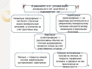 Классификация болот В зависимости от условий водно-минерального питания болота п