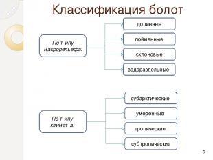 Классификация болот По типу макрорельефа: По типуклимата: пойменные склоновые