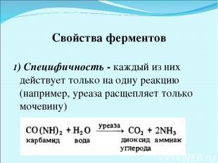 Свойства ферментов 1) Специфичность - каждый из них действует только на одну реа