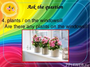 Ask the question 4. plants / on the windowsill Are there any plants on the windo