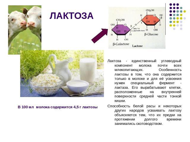 ЛАКТОЗА Лактоза - единственный углеводный компонент молока почти всех млекопитающих. Особенность лактозы в том, что она содержится только в молоке и для её усвоения нужен специальный фермент - лактаза. Его вырабатывают клетки, расположенные на внутр…