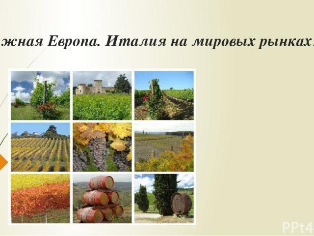 Южная Европа. Италия на мировых рынках.