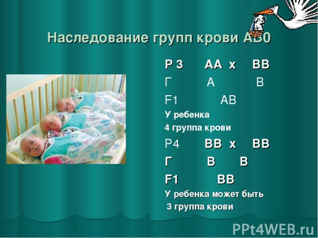 Наследование групп крови AB0 Р 3 ♂ АА x ♀ ВВ Г А В F1 АВ У ребенка 4 группа крови Р4 ♂ ВВ x ♀ ВВ Г В В F1 ВВ У ребенка может быть 3 группа крови