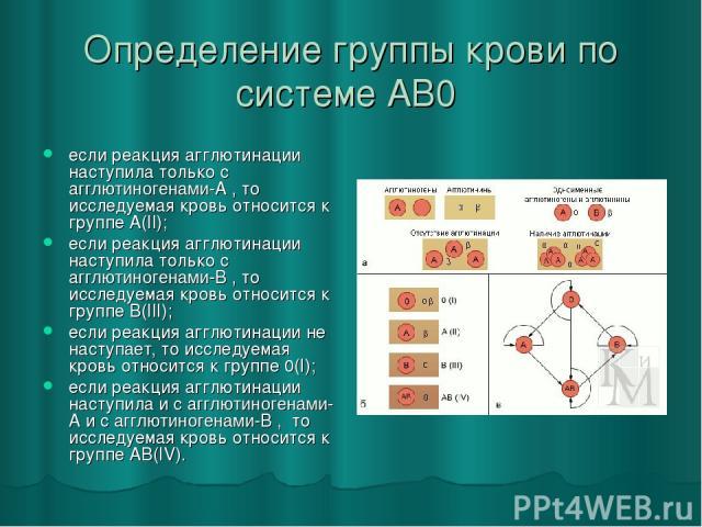 Определение группы крови по системе AB0 если реакция агглютинации наступила только с агглютиногенами-А , то исследуемая кровь относится к группе А(II); если реакция агглютинации наступила только с агглютиногенами-B , то исследуемая кровь относится к…