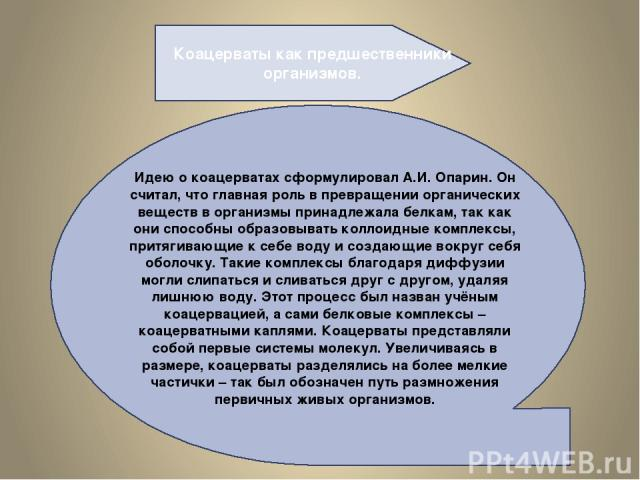 Коацерваты как предшественники организмов. Идею о коацерватах сформулировал А.И. Опарин. Он считал, что главная роль в превращении органических веществ в организмы принадлежала белкам, так как они способны образовывать коллоидные комплексы, притягив…