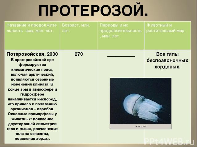 ПРОТЕРОЗОЙ. Название и продолжите льностьэры, млн.лет. Возраст, млн. лет. Периоды и их продолжительность, млн. лет. Животный и растительный мир. Потерозойская, 2030 В протерозойской эре формируются климатические пояса, включая арктический, появляютс…