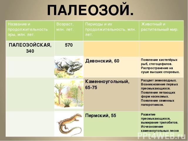ПАЛЕОЗОЙ. Название и продолжительность эры, млн.лет. Возраст, млн. лет. Периоды и их продолжительность, млн. лет. Животный и растительный мир. ПАЛЕОЗОЙСКАЯ, 340 570 Девонский, 60 Появление кистепёрых рыб, стегоцефалов. Распространение на суше высших…