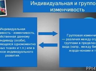 Индивидуальная и групповая изменчивость Индивидуальная изменчивость - изменчивос