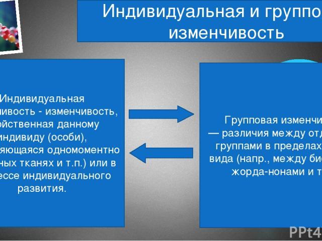 Индивидуальная и групповая изменчивость Индивидуальная изменчивость - изменчивость, свойственная данному индивиду (особи), проявляющаяся одномоментно (в разных тканях и т.п.) или в процессе индивидуального развития. Групповая изменчивость — различия…