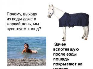 Почему, выходя из воды даже в жаркий день, мы чувствуем холод? Зачем вспотевшую