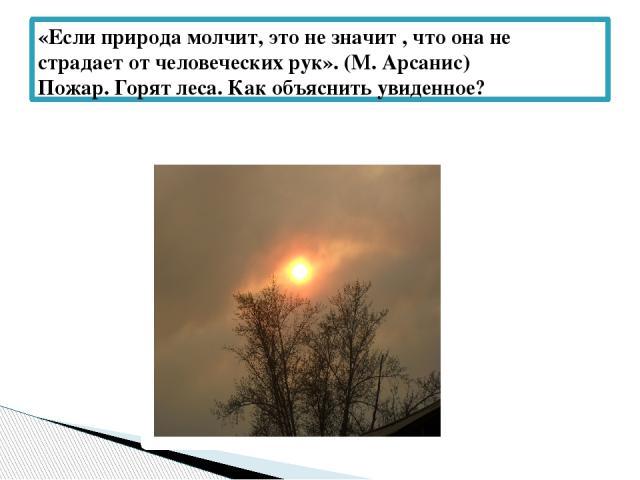 «Если природа молчит, это не значит , что она не страдает от человеческих рук». (М. Арсанис) Пожар. Горят леса. Как объяснить увиденное?