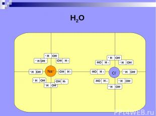 Na+ Cl- H2O