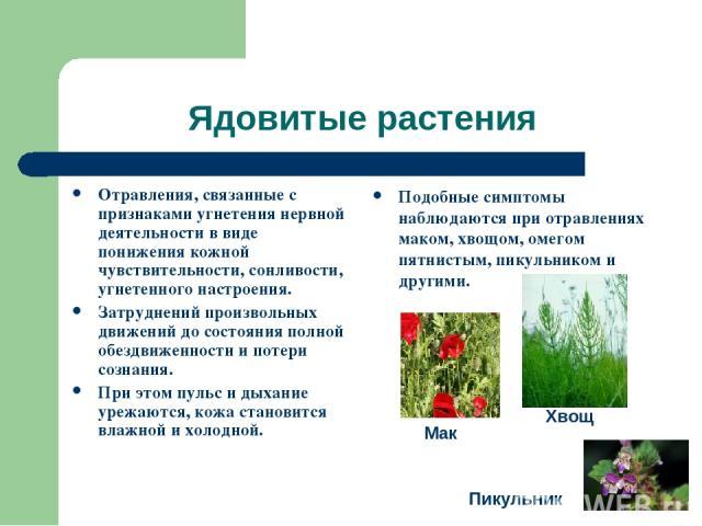 Ядовитые растения Отравления, связанные с признаками угнетения нервной деятельности в виде понижения кожной чувствительности, сонливости, угнетенного настроения. Затруднений произвольных движений до состояния полной обездвиженности и потери сознания…