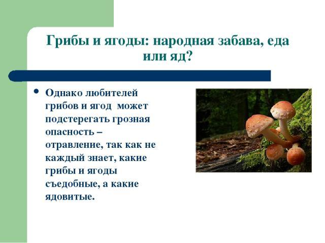 Грибы и ягоды: народная забава, еда или яд? Однако любителей грибов и ягод может подстерегать грозная опасность – отравление, так как не каждый знает, какие грибы и ягоды съедобные, а какие ядовитые.