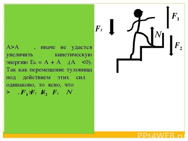 А А , иначе не удастся увеличить кинетическую энергию Ек = А + А ,(А 0). Так как перемещение туловища под действием этих сил одинаково, то ясно, что , и