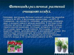 Фитонциды различных растений очищают воздух. Например, фитонциды бегонии снижают