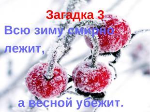 Загадка 3 Всю зиму смирно лежит, а весной убежит.