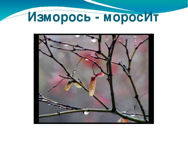 Изморось - моросИт