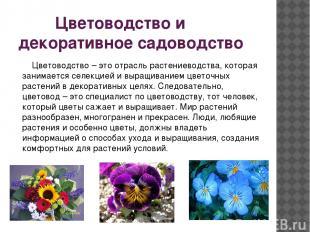 Цветоводство и декоративное садоводство Цветоводство – это отрасль растениеводст