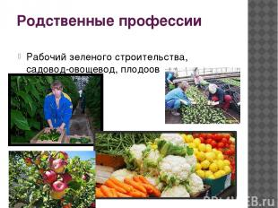 Родственные профессии Рабочий зеленого строительства, садовод-овощевод, плодоово
