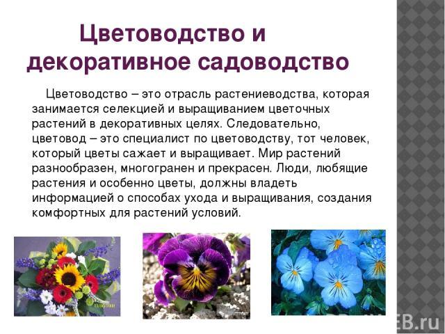 Цветоводство и декоративное садоводство Цветоводство – это отрасль растениеводства, которая занимается селекцией и выращиванием цветочных растений в декоративных целях. Следовательно, цветовод – это специалист по цветоводству, тот человек, который ц…