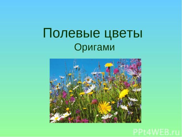 Полевые цветы Оригами