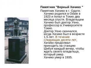"""Памятник """"Верный Хачико """" Памятник Хачико в г. Одате. Хачико родился в Odate в 1"""