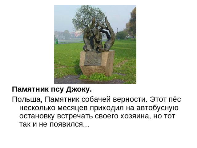 Памятник псу Джоку. Польша, Памятник собачей верности. Этот пёс несколько месяцев приходил на автобусную остановку встречать своего хозяина, но тот так и не появился...