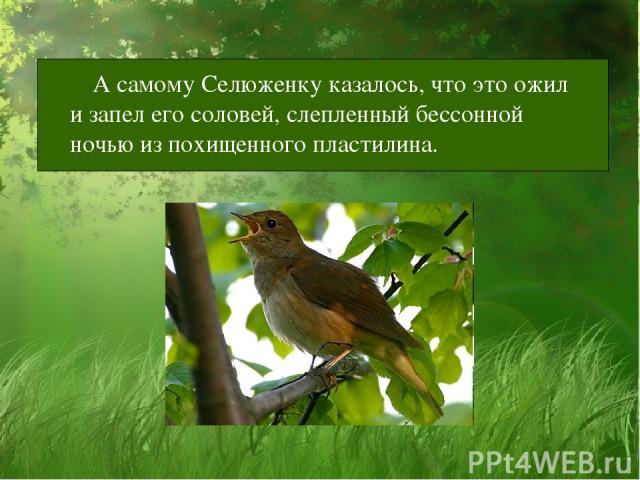 А самому Селюженку казалось, что это ожил и запел его соловей, слепленный бессонной ночью из похищенного пластилина.
