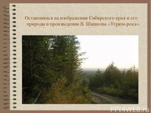 Остановимся на изображении Сибирского края и его природы в произведении В. Шишко