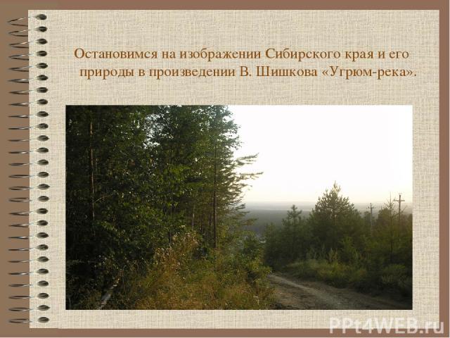 Остановимся на изображении Сибирского края и его природы в произведении В. Шишкова «Угрюм-река».