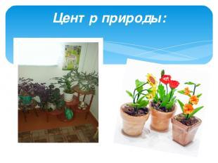 Центр природы: