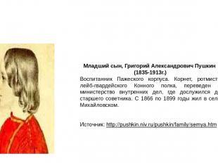 Младший сын, Григорий Александрович Пушкин (1835-1913г.) Воспитанник Пажеского